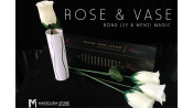 Rose & Vase by Wenzi Studio Presented by Bond Lee - Trick