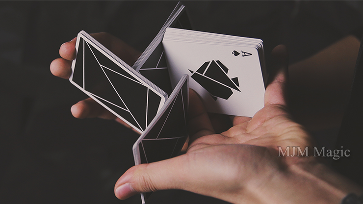 FLEXIBLE (Black) Playing Cards - Click Image to Close