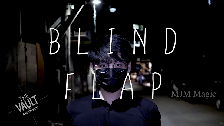 The Vault - Blind Flap Project by PH and Mario Tarasini video DOWNLOAD